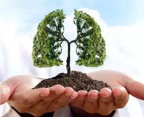 肺癌如何早期发现早期治疗?远离肺癌,你需要了解这些