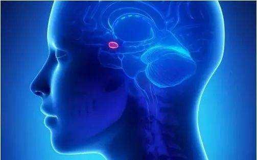 儿童脑瘤早期症状