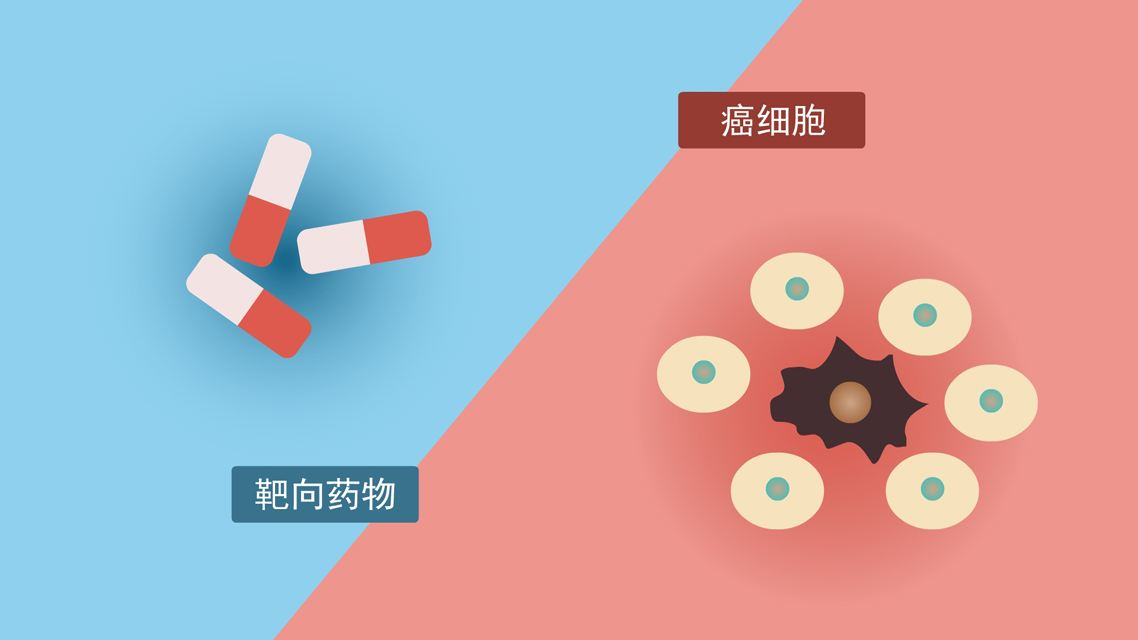 北京好中医汇总肺癌靶向药服用的注意事项