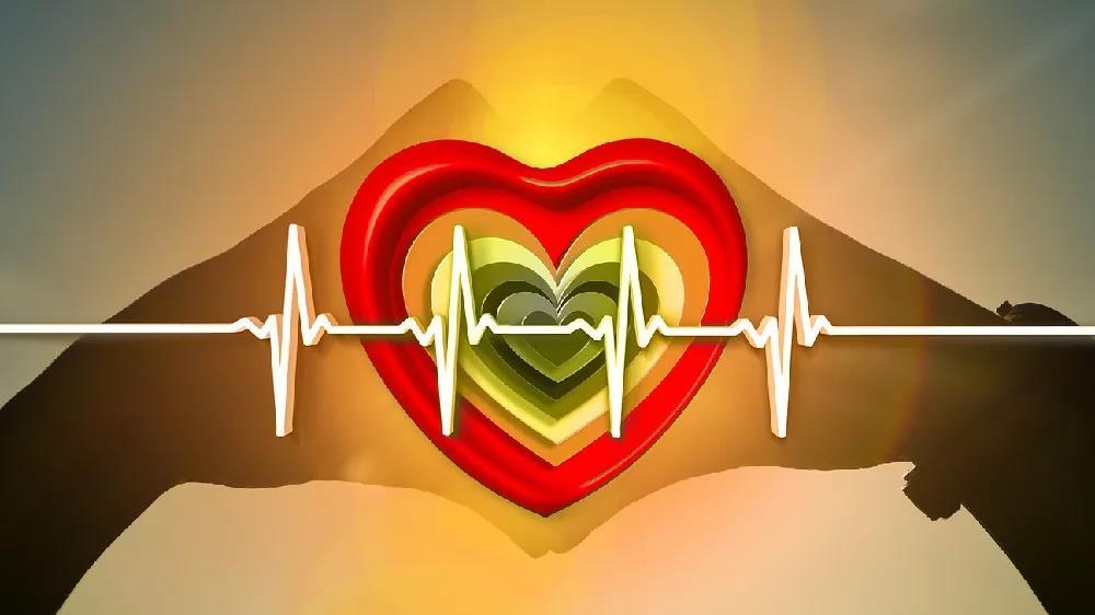 北京好中医帮您您分析心脏真的不会得癌吗?