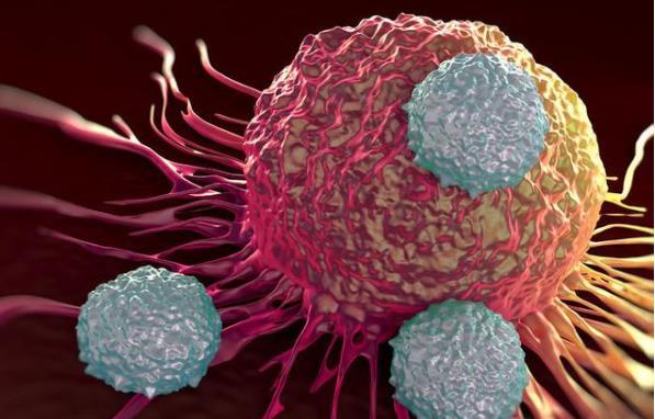 癌症越早发现治愈率越高之癌症高危人群